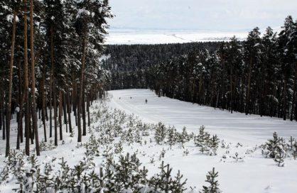 توزيع أفران اقتصادية  للحد من استهلاك الخشب بالمناطق النائية